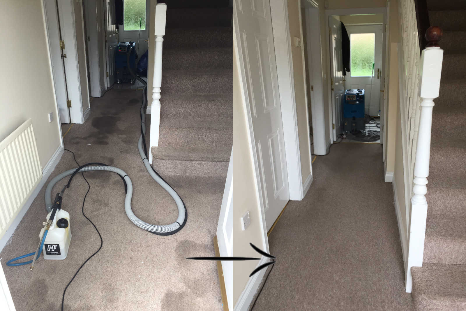 end of tenancy carpet clean peterborough