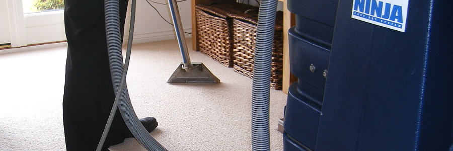 cleaning a carpet in a peterborough home
