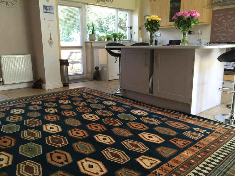 professionally cleaned carpets and rugs